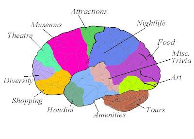 Interior Brain Diagram