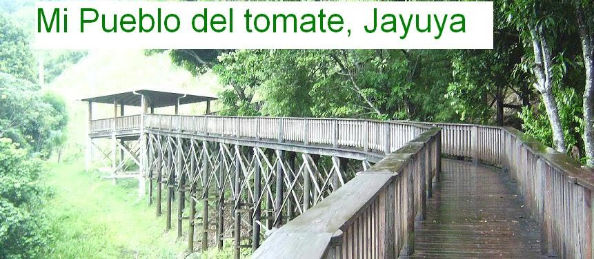 Mi Pueblo del Tomate: Jayuya