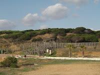 Parque Dunar de Matalascañas