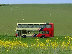 Double decker bus driving through meadows