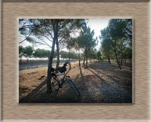con la bici descubriendo rincones...