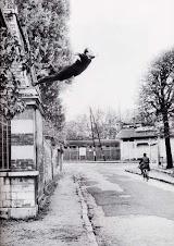 LE SAUT DANS LE VIDE (1960) Yves Klein