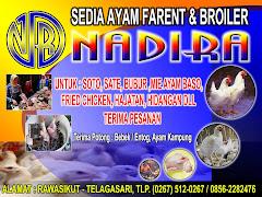 UD. NADIRA - RAWASIKUT, KARAWANG