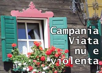 Campania Viata nu e violenta