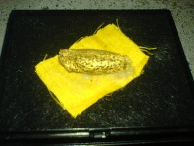 Besi Kuning