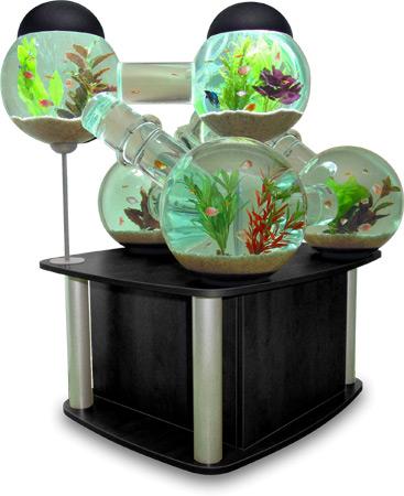custom-fish-tank