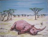 rhinocerose