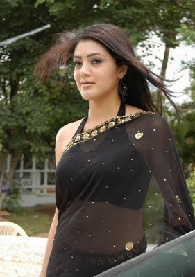 South Indian Actress in Black Saree Photos Parvathi Melton