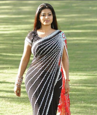 South Indian Actress in Black Saree Photos Sneha
