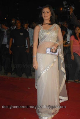 Urvashi Sharma in white transparent saree