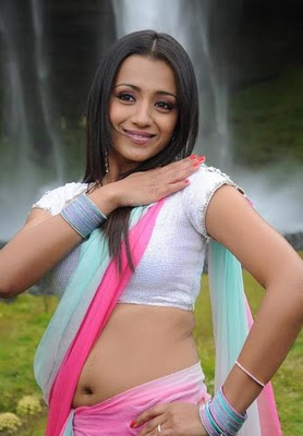 trisha actress of namo venkatesa