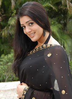 Saree pictures of Actress Parvathi Melton