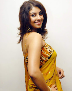 South Indian Actress Richa in Saree Photo Gallery