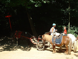 Deux poneys