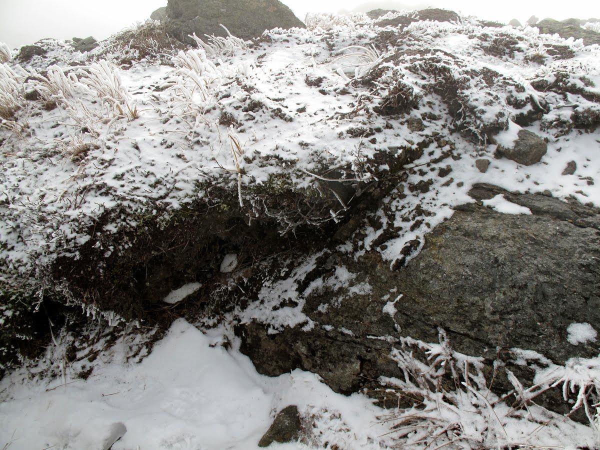 White mountain sojourn 11 06 10 mt jefferson felsenmeer for Soil and geology