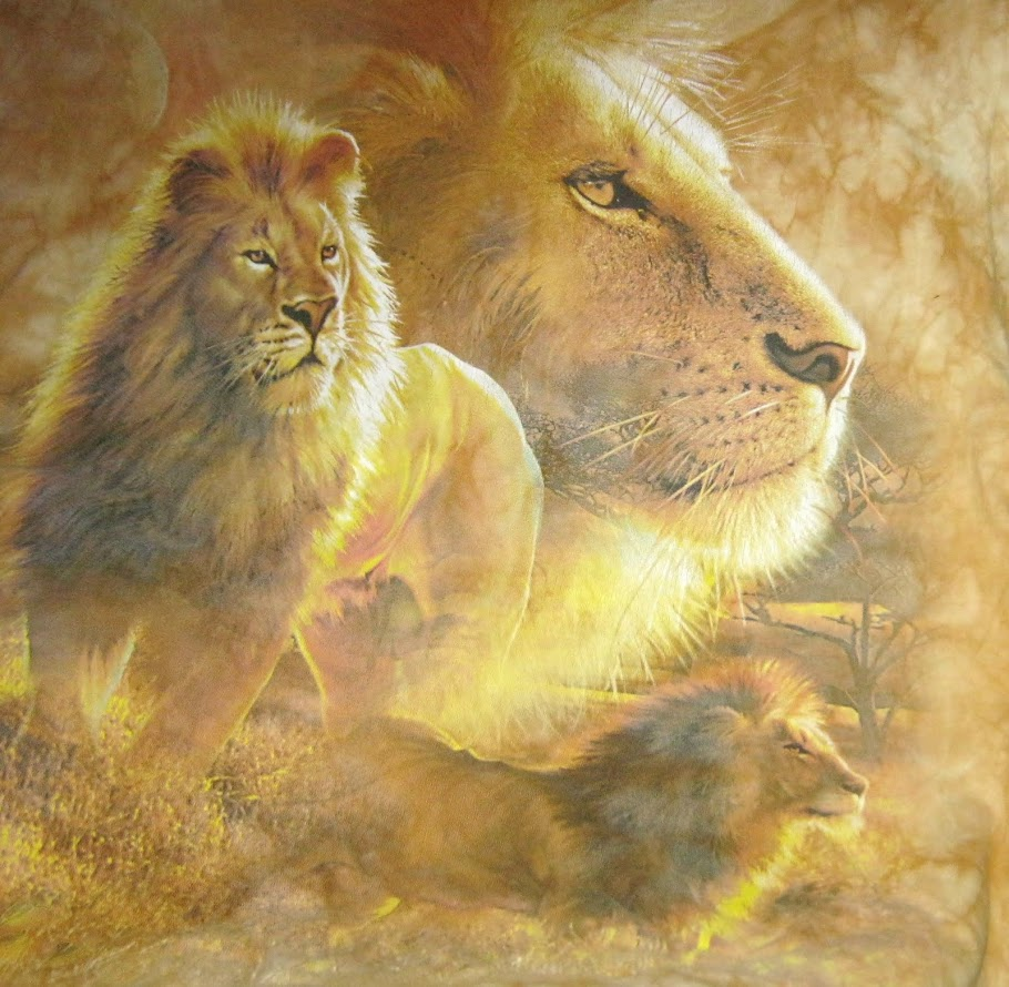 LIONS SHARE MAJESTY