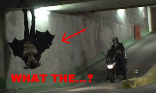 Yeah.  It's a guy.  Running around in a bat costume.  So yes, it's a Bat.  Man.