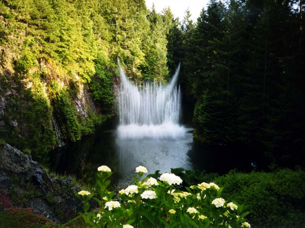 Imagenes De Paisajes Con Rosas - 20 imágenes de paisajes naturales animales rosas y