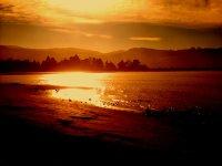 Sunset Dr's Point NZ