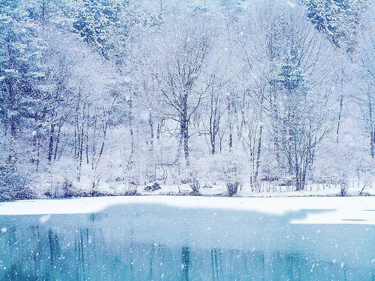 Christmas winter wallpaper ice lake urban art wallpaper for Wall scenes