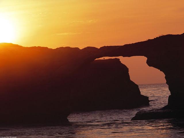 Natural bridges state park santa cruz