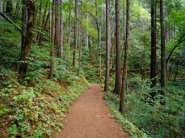 Trail columbia river gorge oregon Nature wallpaper