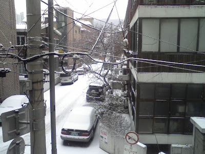 Snow on Jan. 16, 2009