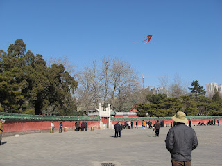 Kite-flying, Ritan Park