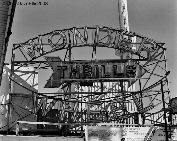 coney island 2008