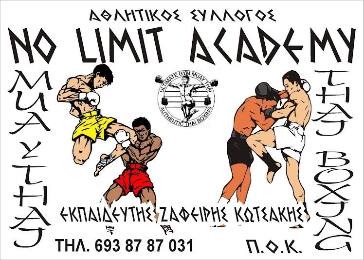 no limit academy