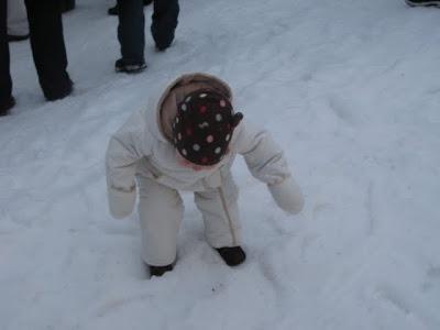 j inspecting the snow