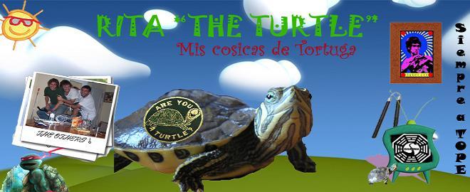 RITA, THE TURTLE