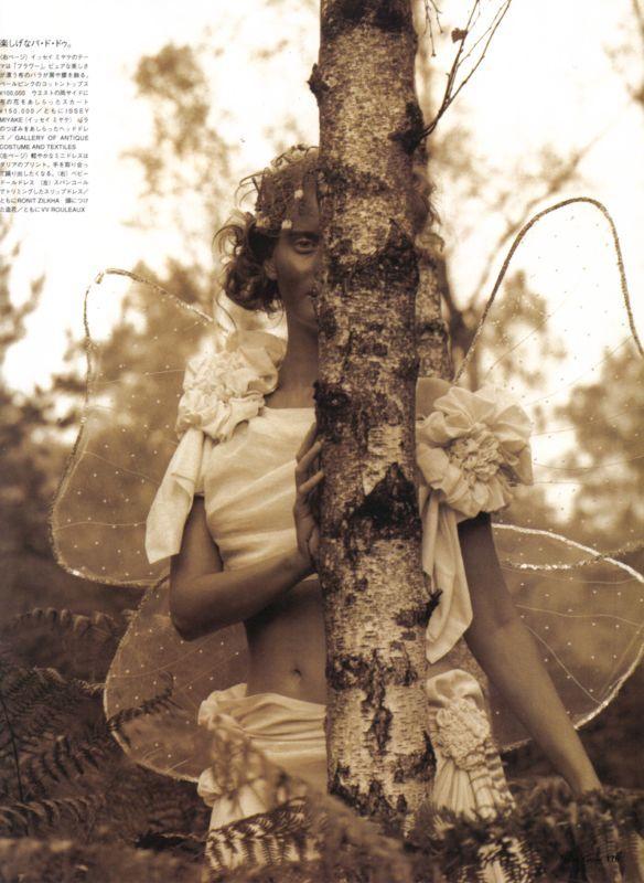 [tinkerbellsforest-3.jpg]