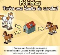 Potrinhos