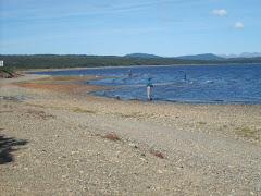 Pesca de salmónidos en Laguna Parrillar