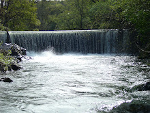 NID's Gold Hill Diversion Dam is the Largest Barrier on the Auburn Ravine, Which Has Eleven Others!