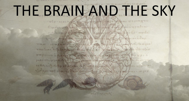 the brain and the sky