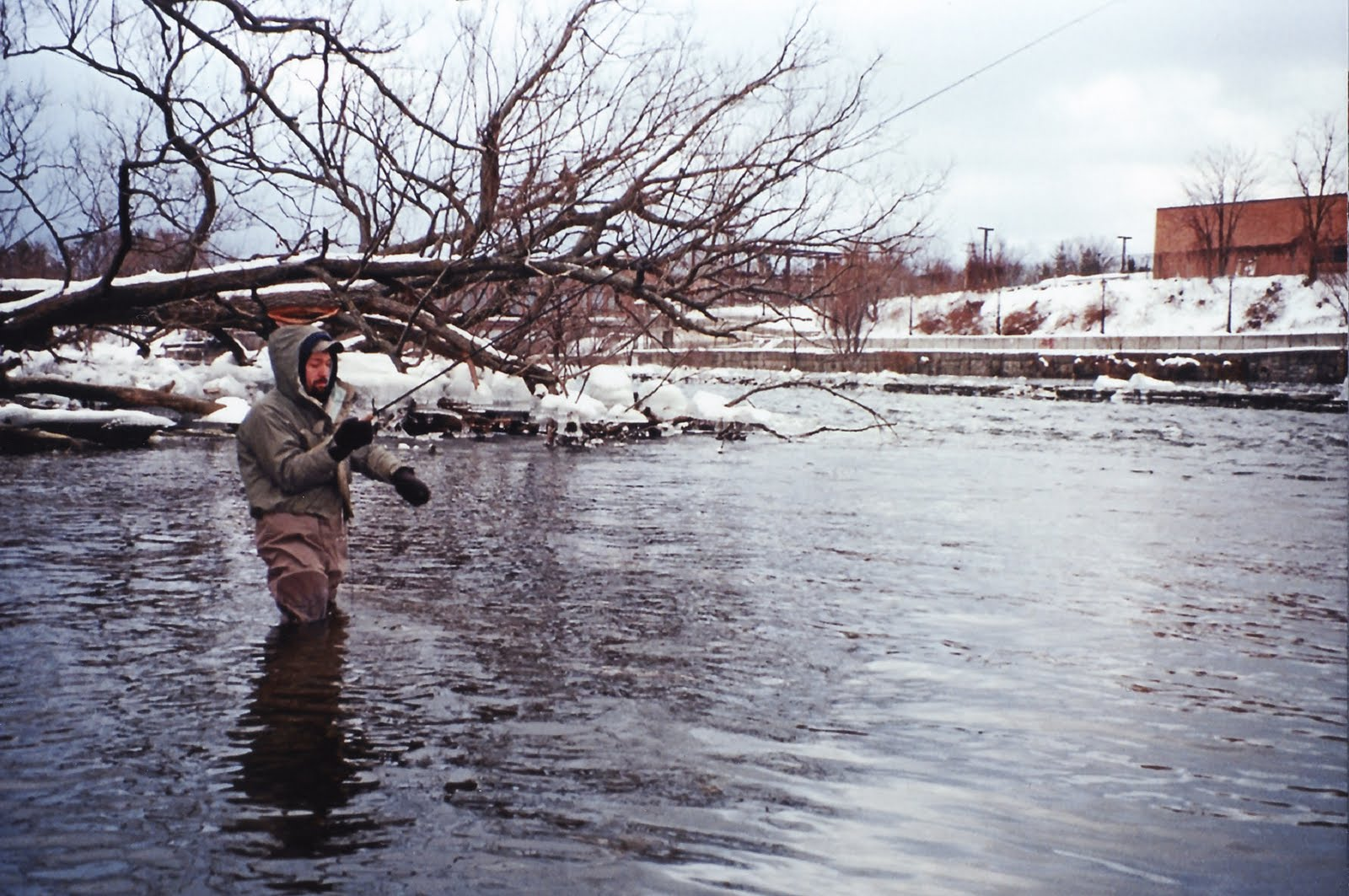 Fishing hunting in oswego county ny the oswego river for Oswego river fishing