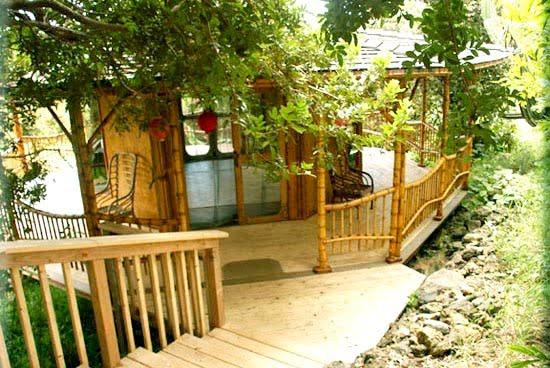 Despertar curioso bambu - Casa de bambu madrid ...
