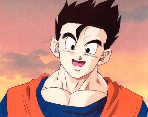 Dragon Ball Z Gohan Face