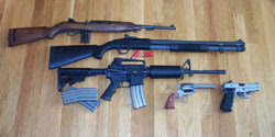 guns n stuff blog item 3 what kind of firearm gun do you own