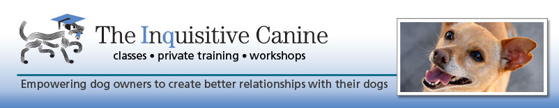 Dog Training and Coaching Tips : Ventura and Santa Barbara