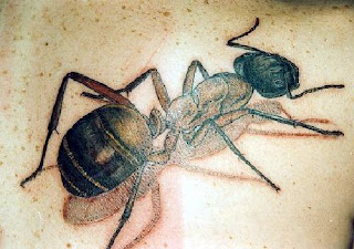 Black Ant 3D Tattoo Design
