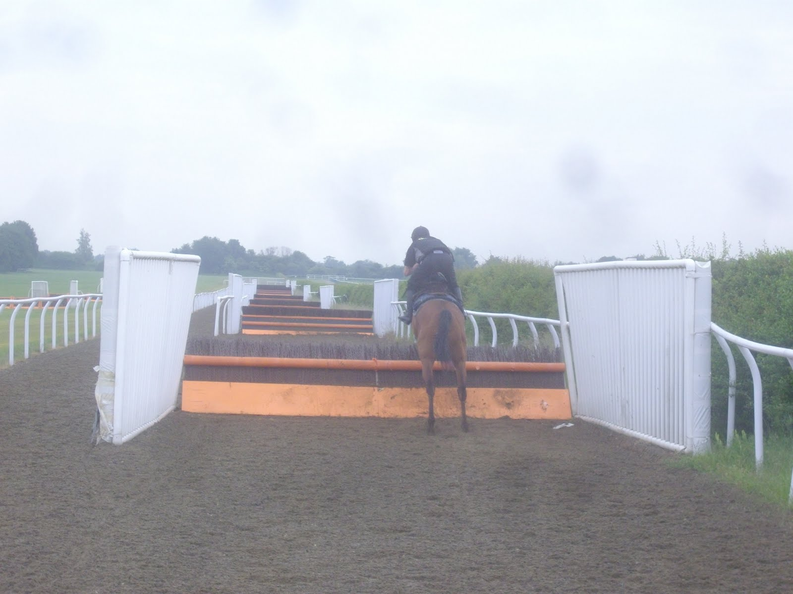 As both our mounts were very well-behaved (I was on my hack Ex Con), ...