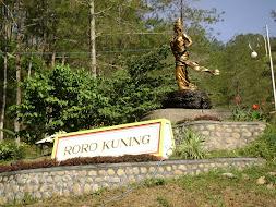 Roro Kuning
