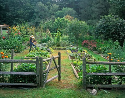 An Accomplished Woman: Gardening: A Fall Plan for the Spring