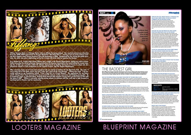 Magazine clips