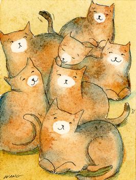 [Kitten+Litter.jpg]