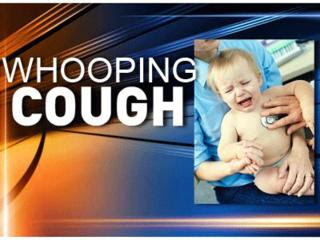 Whooping Cough Natural Treatment Infants