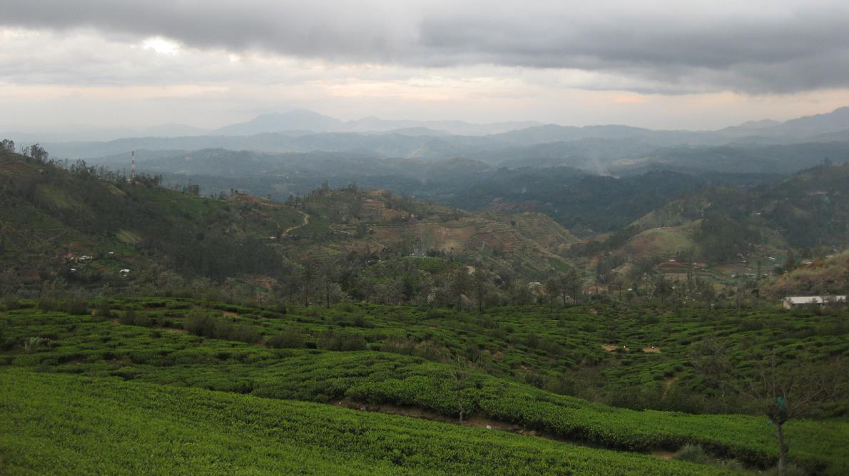 Welimada Sri Lanka  city photo : Kirigalpoththa: Towards Welimada